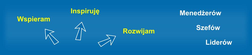 Tomasz Dulewicz - coaching, szkolenia